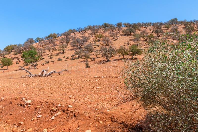 Τοπίο στη Βόρεια Αφρική στοκ φωτογραφίες με δικαίωμα ελεύθερης χρήσης