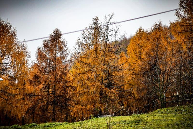 Τοπίο στο βουνό κατά τη διάρκεια του φθινοπώρου στοκ φωτογραφία με δικαίωμα ελεύθερης χρήσης