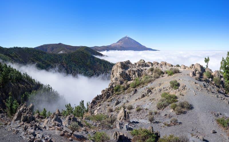 Τοπίο στο εθνικό πάρκο Tenerife με Teide στοκ εικόνες με δικαίωμα ελεύθερης χρήσης