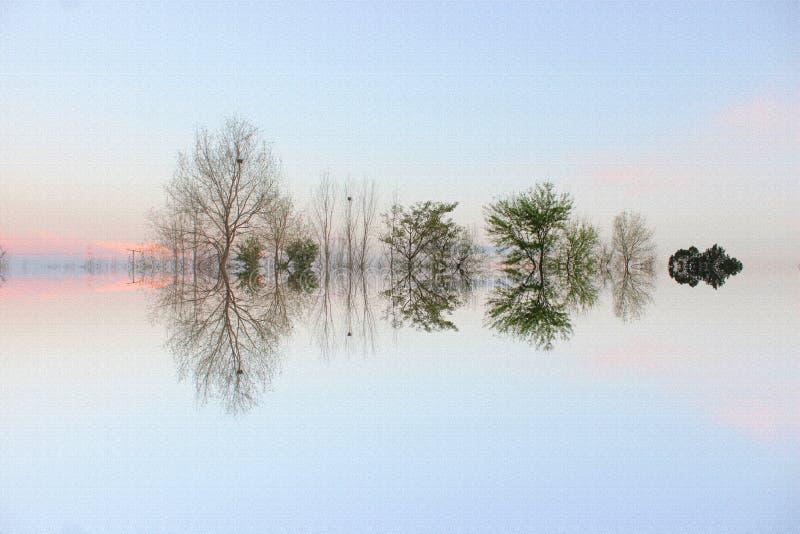 Τοπίο τέχνης δέντρων στοκ φωτογραφία