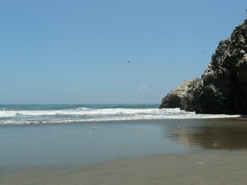 Τοπίο της ακτής με τους βράχους στοκ εικόνα