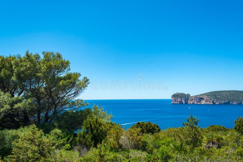 Τοπίο της ακτής Capo Caccia, στη Σαρδηνία στοκ εικόνα με δικαίωμα ελεύθερης χρήσης