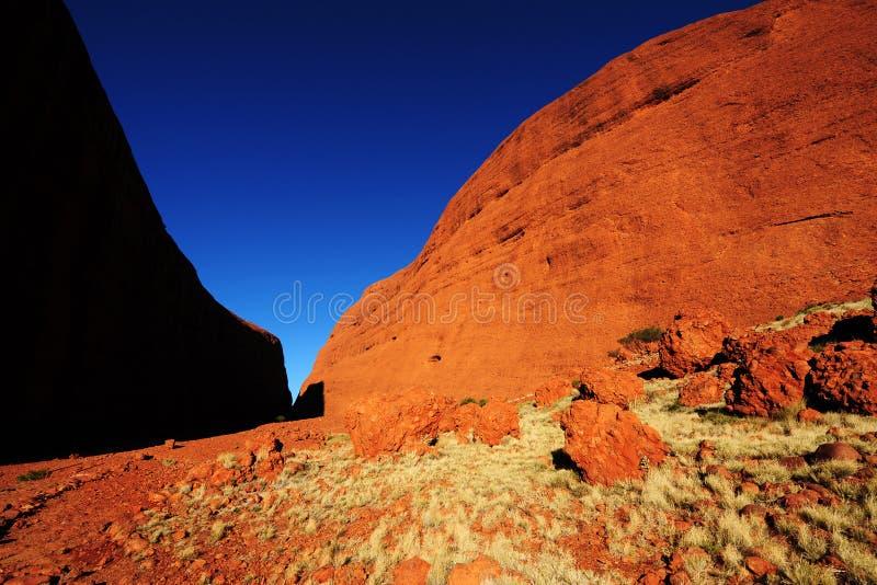 τοπίο της Αυστραλίας στοκ εικόνα
