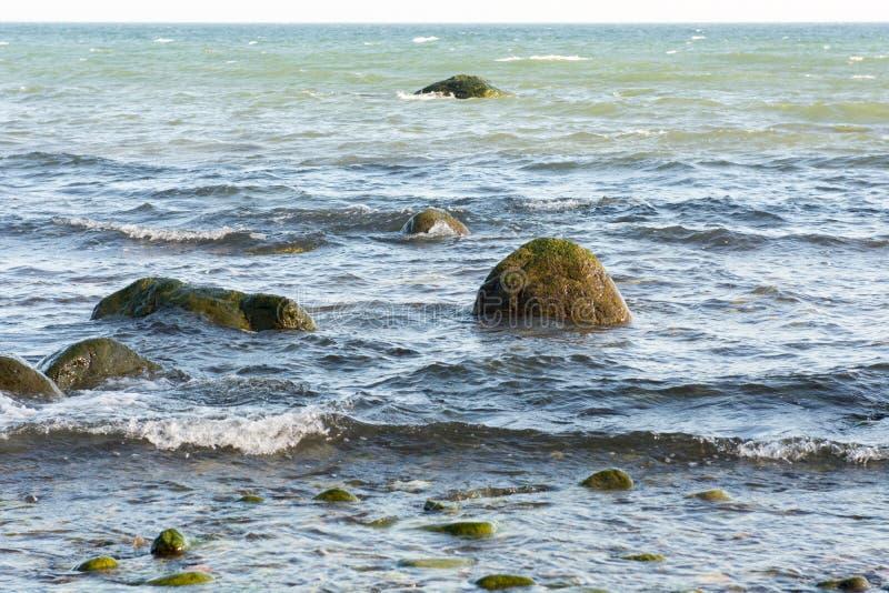 Τοπίο της θάλασσας της Βαλτικής στοκ εικόνες
