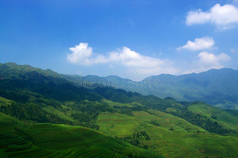 τοπίο της Κίνας αγροτικό στοκ εικόνες
