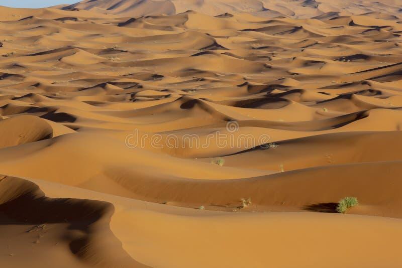 Τοπίο της καυτής ερήμου άμμου με τον αέρα και τον ουρανό Υπαίθριο πανόραμα στοκ φωτογραφία