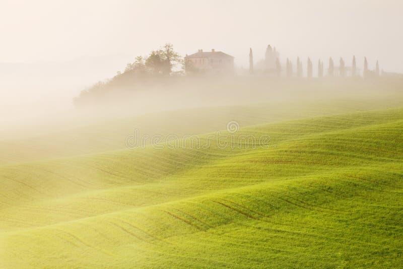 Τοπίο της Τοσκάνης στην ανατολή Χαρακτηριστικός για το tuscan αγροτικό σπίτι περιοχών, λόφοι, αμπελώνας Φρέσκο πράσινο Τοσκάνη το στοκ φωτογραφία με δικαίωμα ελεύθερης χρήσης
