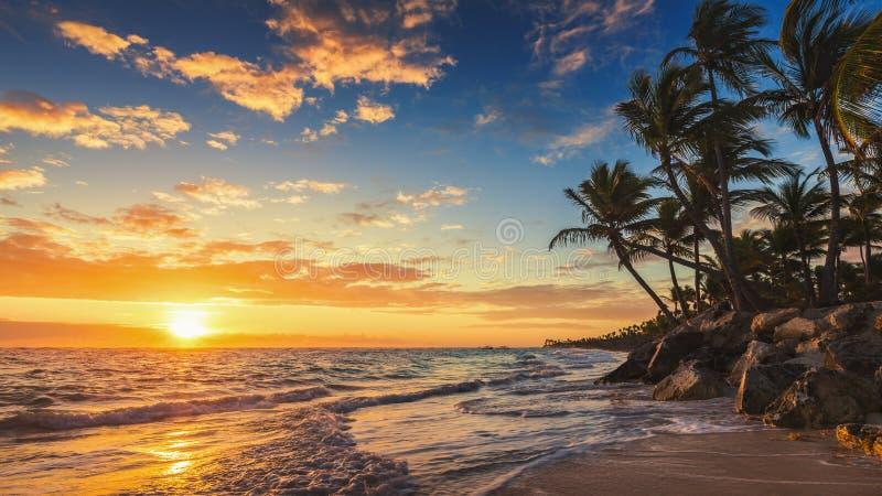 Τοπίο της τροπικής παραλίας νησιών παραδείσου στοκ εικόνα με δικαίωμα ελεύθερης χρήσης