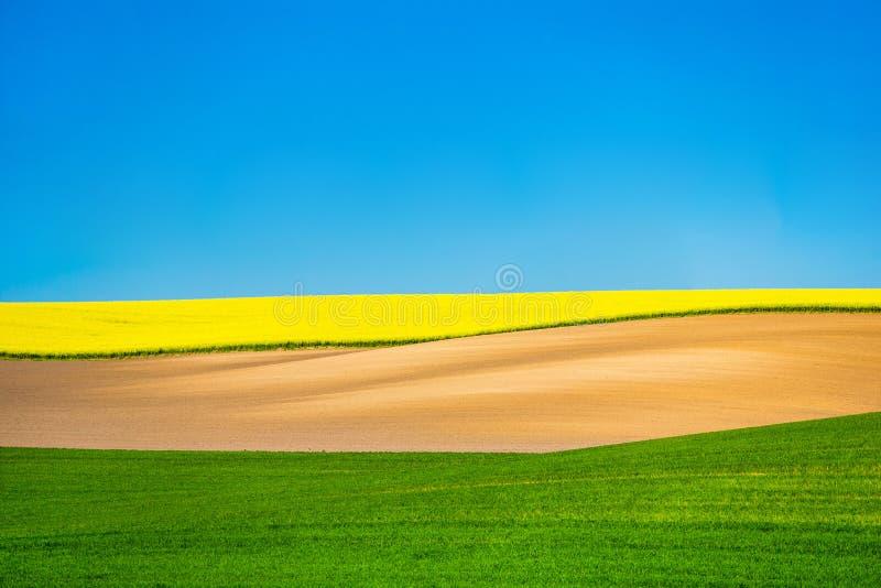 Τοπίο τομέων ελαίου κολζά Όμορφο καλλιεργήσιμο έδαφος o στοκ εικόνα