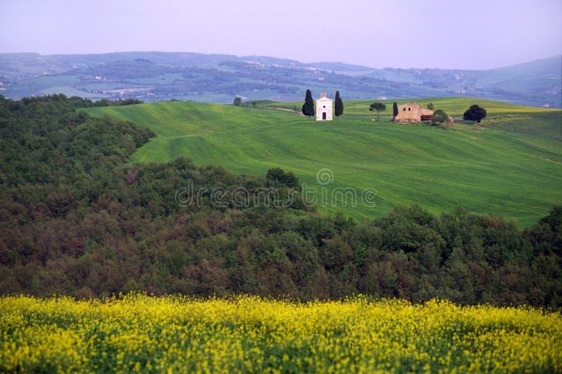 Download τοπίο Τοσκάνη της Ιταλίας στοκ εικόνα. εικόνα από πράσινος - 2231787
