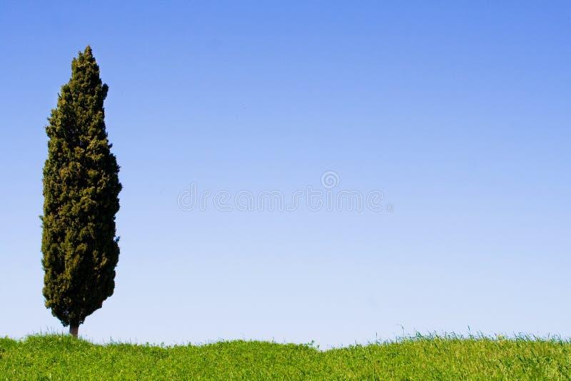 τοπίο Τοσκάνη στοκ φωτογραφίες