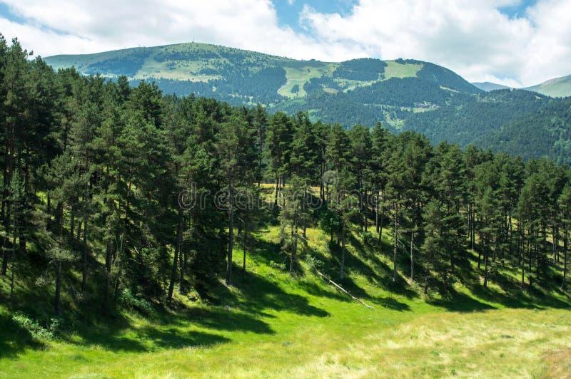 Τοπίο του δάσους και των βουνών των Πυρηναίων στοκ φωτογραφίες με δικαίωμα ελεύθερης χρήσης
