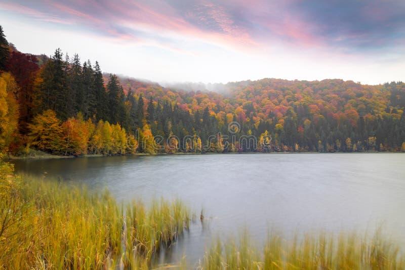 Τοπίο του δάσους φθινοπώρου κοντά στη λίμνη με το θεαματικό ουρανό Au στοκ εικόνα με δικαίωμα ελεύθερης χρήσης