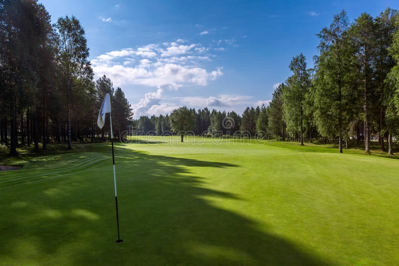 Τοπίο του τομέα γκολφ με τη σημαία τρυπών στο πρώτο πλάνο στοκ εικόνες