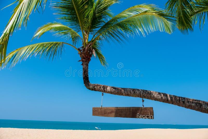 Τοπίο του φοίνικα καρύδων, της αμμώδους παραλίας με τη θάλασσα και του υποβάθρου μπλε ουρανού στοκ φωτογραφία με δικαίωμα ελεύθερης χρήσης
