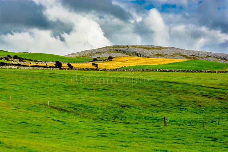 Τοπίο το Burren στην Ιρλανδία στοκ εικόνα