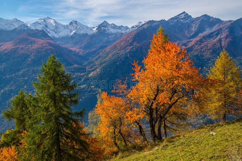 Τοπίο των ιταλικών Άλπεων το φθινόπωρο στοκ φωτογραφία με δικαίωμα ελεύθερης χρήσης