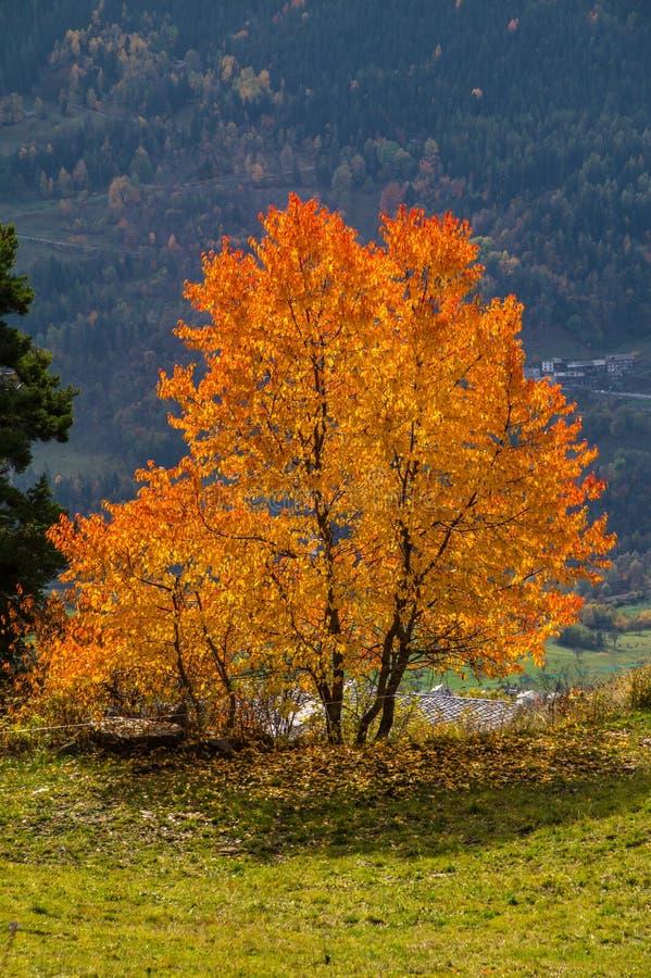 Τοπίο των ιταλικών Άλπεων το φθινόπωρο στοκ φωτογραφίες