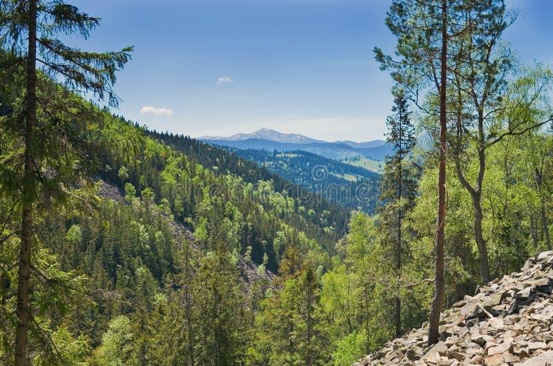 Τοπίο των Καρπάθιων βουνών στοκ φωτογραφία