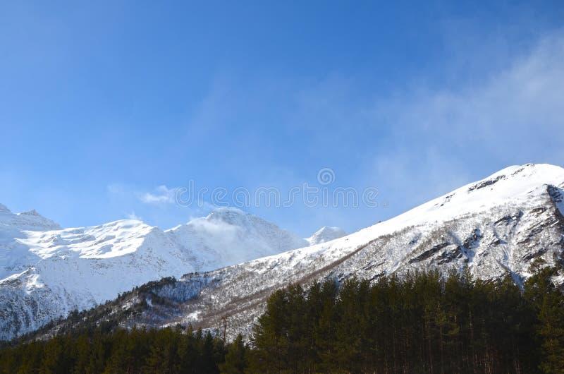 Τοπίο των όμορφων κλίσεων των βουνών Καύκασου στοκ εικόνα με δικαίωμα ελεύθερης χρήσης