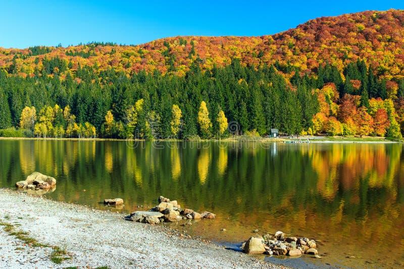 Τοπίο φθινοπώρου και ζωηρόχρωμο δάσος, λίμνη του ST Ana, Τρανσυλβανία, Ρουμανία στοκ φωτογραφία με δικαίωμα ελεύθερης χρήσης