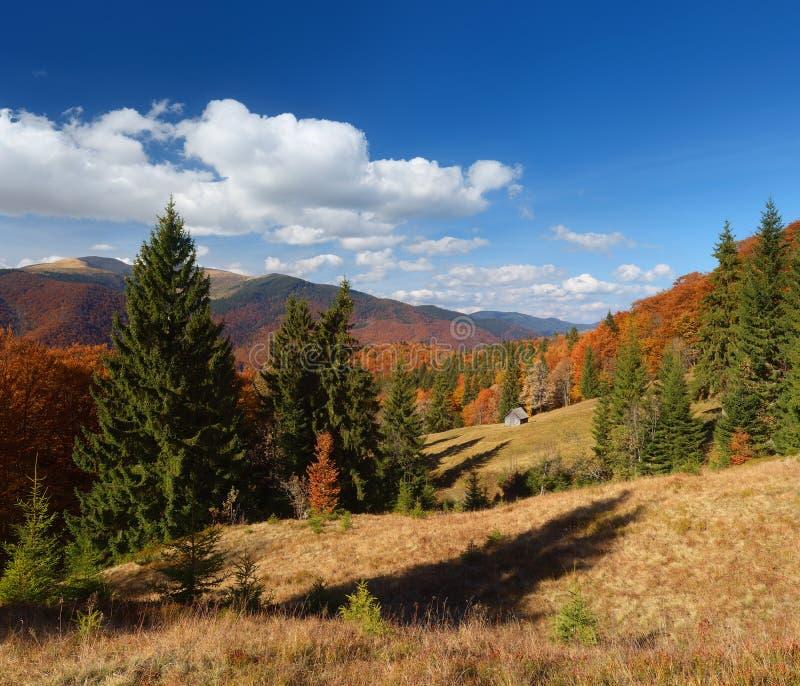 Τοπίο φθινοπώρου με ένα ξύλινο σπίτι σε ένα δάσος βουνών στοκ εικόνα