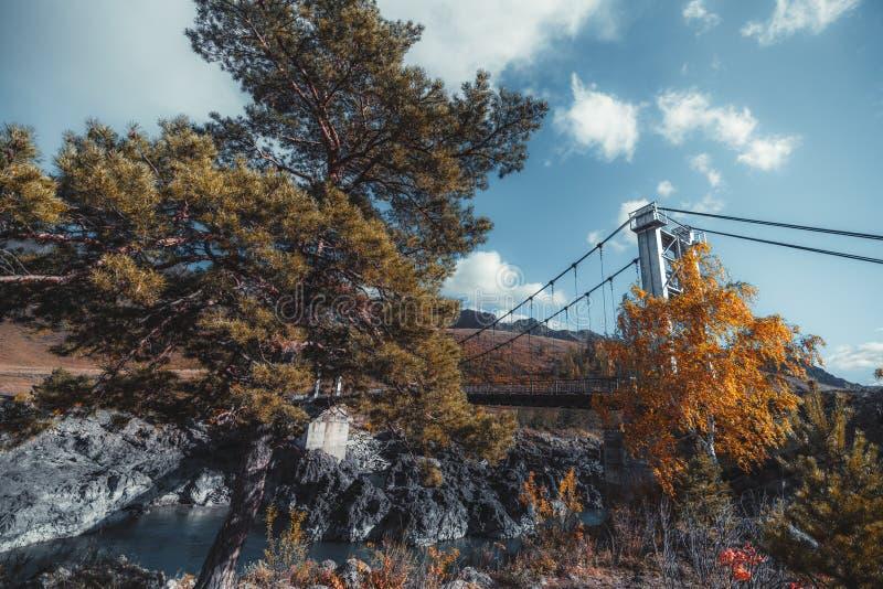 Τοπίο φθινοπώρου με τα δέντρα και τη γέφυρα στοκ φωτογραφίες