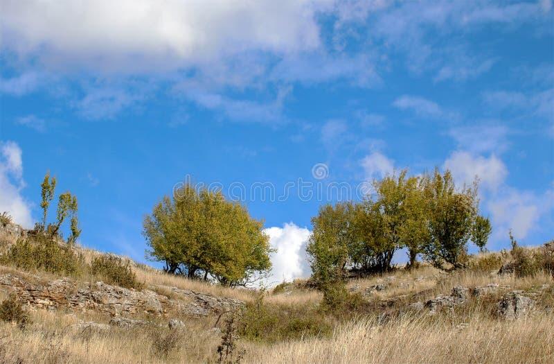 Τοπίο φθινοπώρου - ουρανός πέρα από τον τομέα στοκ φωτογραφίες με δικαίωμα ελεύθερης χρήσης