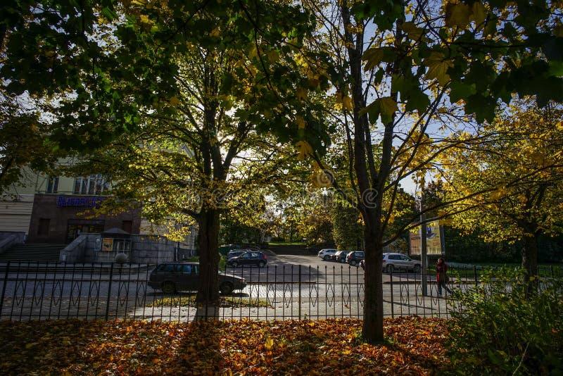 Τοπίο φθινοπώρου στην ηλιόλουστη ημέρα στοκ φωτογραφίες με δικαίωμα ελεύθερης χρήσης