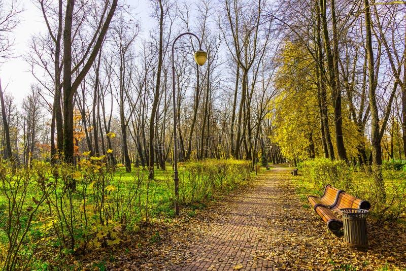 Τοπίο φθινοπώρου της αλέας πάρκων στοκ φωτογραφία