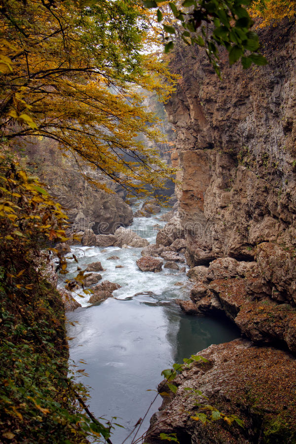 Τοπίο φθινοπώρου του γρήγορου ποταμού βουνών στοκ φωτογραφία με δικαίωμα ελεύθερης χρήσης