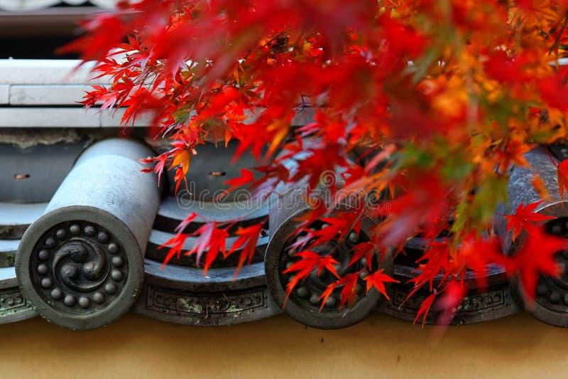 Τοπίο φθινοπώρου του φλογερού φυλλώματος σφενδάμνου πέρα από τη μαρκίζα των παραδοσιακών ιαπωνικών κεραμιδιών σε Tenryu-tenryu-ji στοκ φωτογραφία
