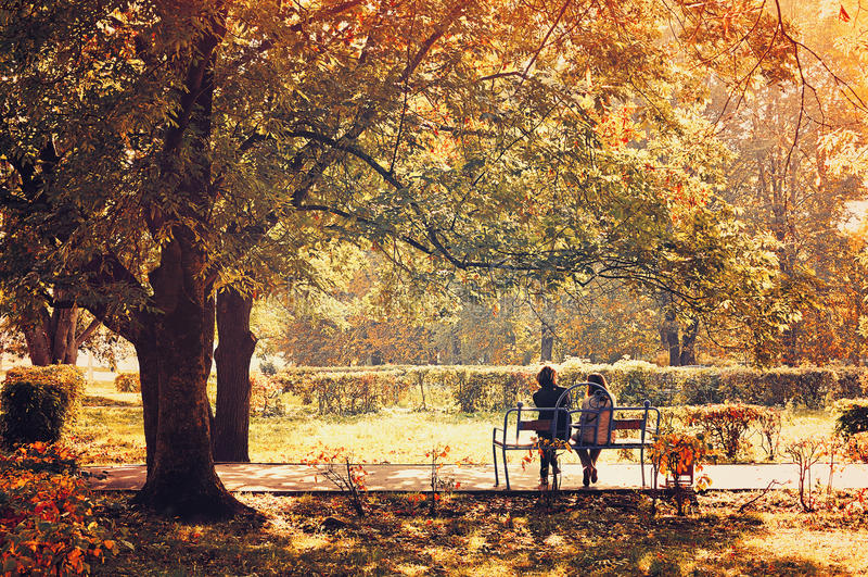 Τοπίο φθινοπώρου - όμορφο πάρκο πόλεων στον ηλιόλουστο καιρό στοκ φωτογραφία με δικαίωμα ελεύθερης χρήσης