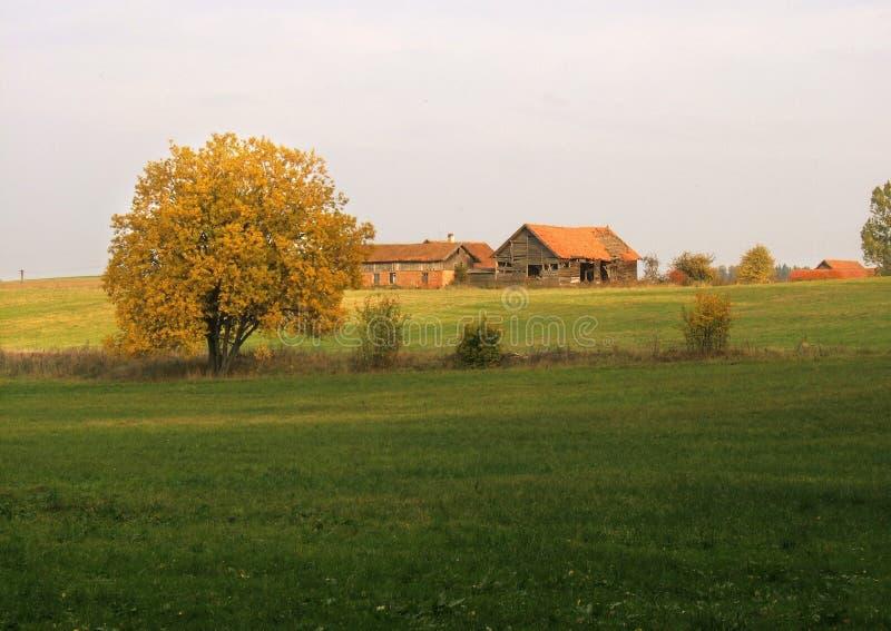 Download τοπίο φθινοπώρου στοκ εικόνες. εικόνα από φύλλο, φρέσκος - 1534914