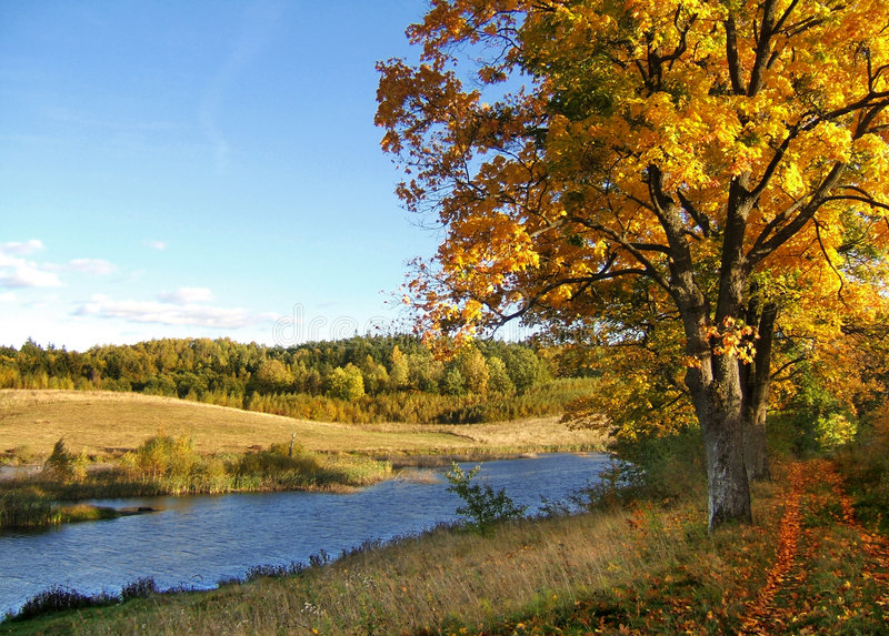 Download τοπίο φθινοπώρου στοκ εικόνες. εικόνα από πράσινος, φωτισμός - 1536516