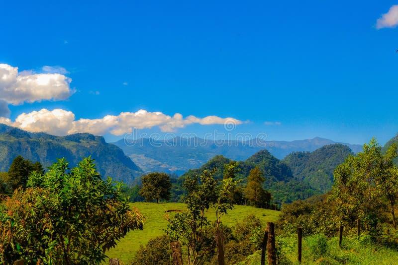 Τοπίο φύσης, βουνά από το xalapa Μεξικό στοκ εικόνες