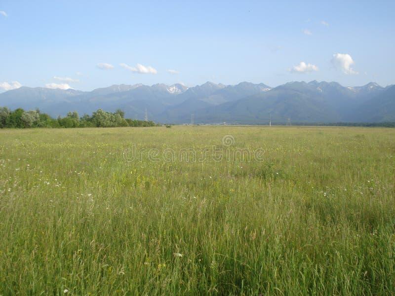 Τοπίο φύσης στην επαρχία στη Ρουμανία στοκ φωτογραφία με δικαίωμα ελεύθερης χρήσης