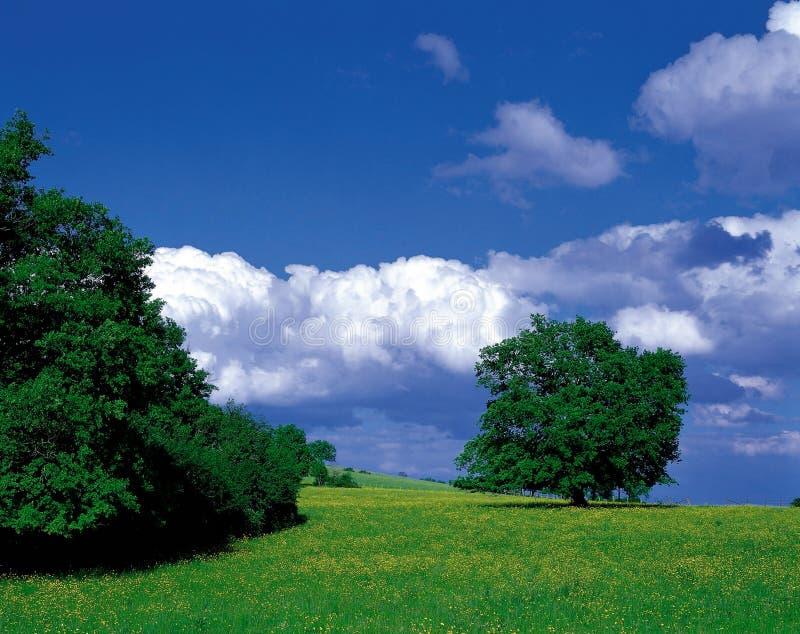 τοπίο φύσης στοκ φωτογραφία