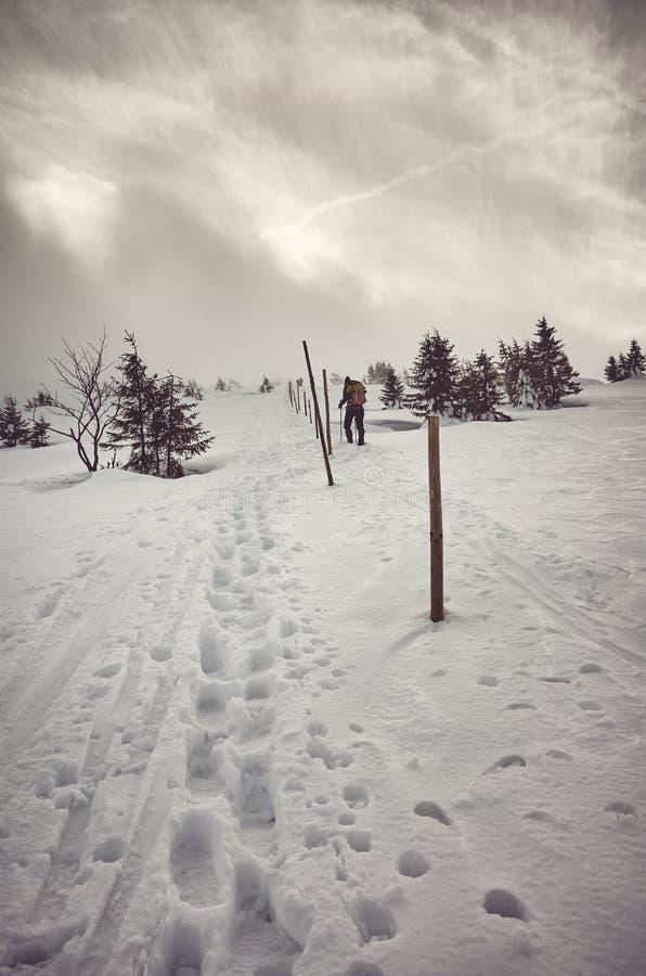 Τοπίο χειμερινών βουνών κατά τη διάρκεια μιας χιονοθύελλας στοκ εικόνες
