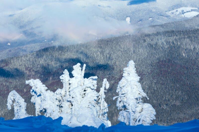 Τοπίο χειμερινών βουνών με τα χιονώδη δέντρα στοκ φωτογραφίες