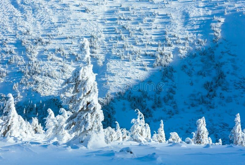 Τοπίο χειμερινών βουνών με τα χιονώδη δέντρα στοκ εικόνες
