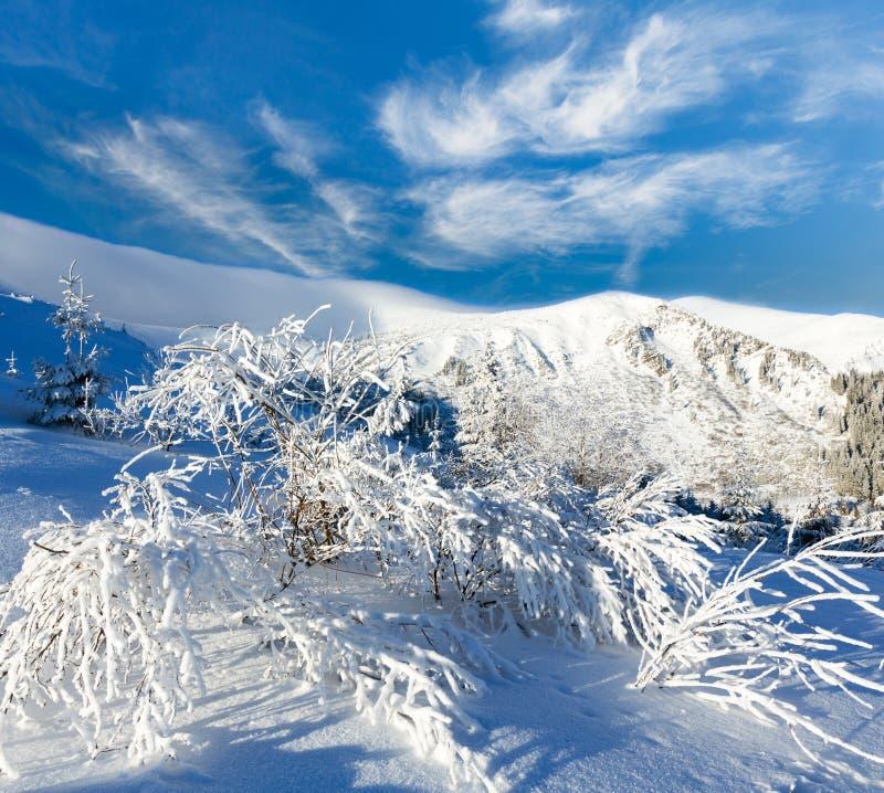 Τοπίο χειμερινών βουνών πρωινού στοκ εικόνες με δικαίωμα ελεύθερης χρήσης
