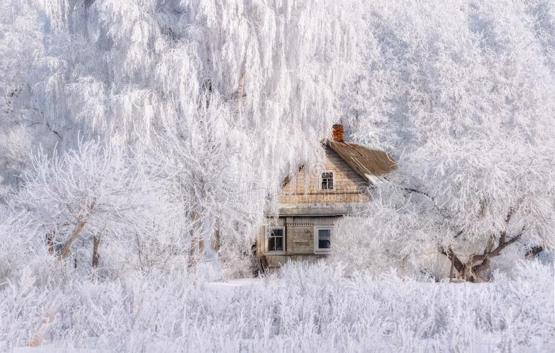 Τοπίο χειμερινών Χριστουγέννων στους ρόδινους τόνους με το παλαιό σπίτι παραμυθιού, που περιβάλλεται από τα δέντρα στο αγροτικό τ στοκ εικόνες με δικαίωμα ελεύθερης χρήσης