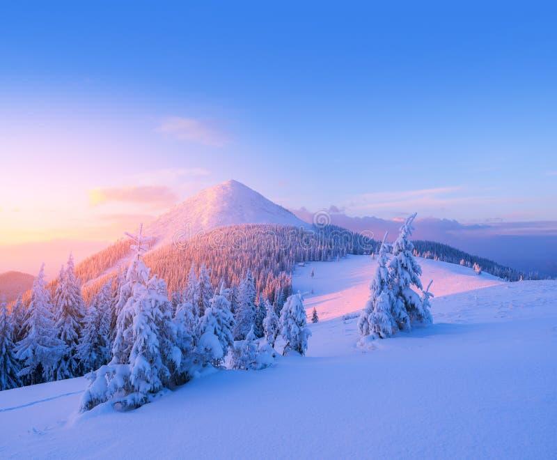 Τοπίο Χριστουγέννων στα χειμερινά βουνά στο ηλιοβασίλεμα στοκ φωτογραφία