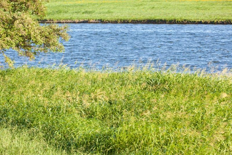 Τοπίο όχθεων ποταμού του καλοκαιριού στοκ εικόνες με δικαίωμα ελεύθερης χρήσης
