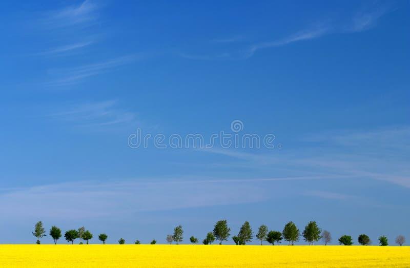τοπίο στοκ εικόνα με δικαίωμα ελεύθερης χρήσης