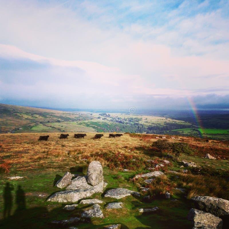 Τοπίο Dartmoor στοκ φωτογραφίες