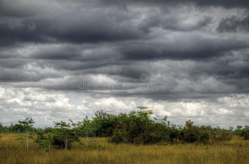 Τοπίο Everglades, σύννεφα στοκ φωτογραφία με δικαίωμα ελεύθερης χρήσης