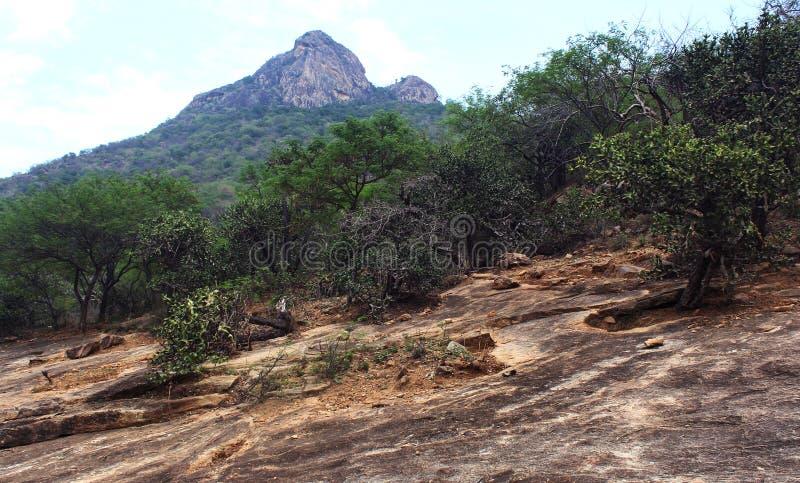 Τοπίο Hill στοκ εικόνα με δικαίωμα ελεύθερης χρήσης