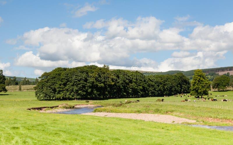 Τοπίο Lauder στα σκωτσέζικα σύνορα στοκ φωτογραφία με δικαίωμα ελεύθερης χρήσης